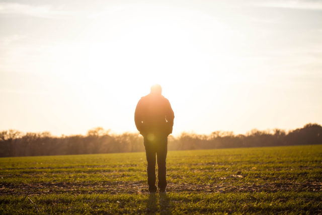 How do you know you're a Christian? Man walking across a field into a sunrise, grove of trees at horizon, Gospel, Assurance, Perseverance, Suffering, Tribulation, Trouble, Romans 10, Romans 5, Fruit of the Spirit, Hope, Endurance