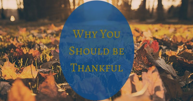Why You Should Be Thankful