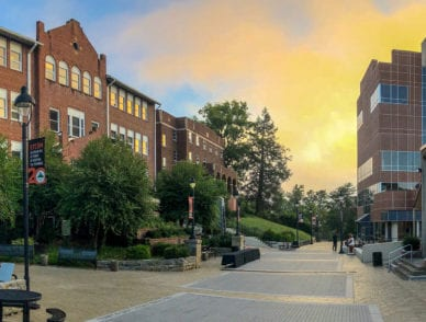 A panorama of campus and benefactors plaza on an early summer morning with the sun rising