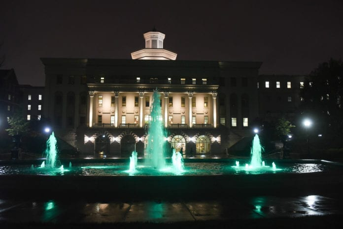 Fountain with Green lights