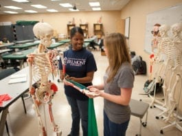 Students work with Skeleton in Belmont's Occupational Therapy Program
