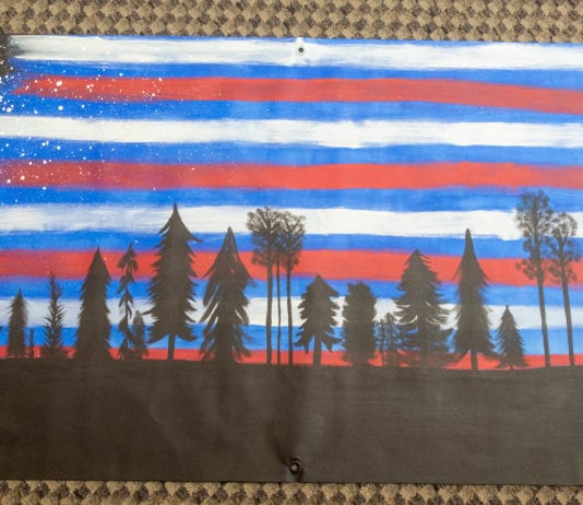 American Sky, Unity Flag submitted by Alison Miller and Nancee Wright (Minnesota)