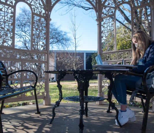 Student studies in campus gazebo