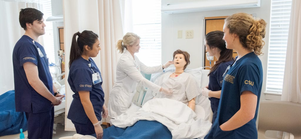A doctor showing nursing students the length of a tube on a simulation dummy patient.