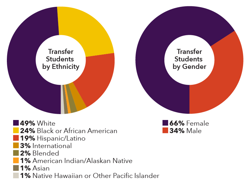 Transfer students by ethnicity, 49% white, 24% black, 19% Hispanic/latino, 3% international, 2% blended, 1% American indian/alaskan native, 1% asian, 1% native Hawaiian or other pacific islander